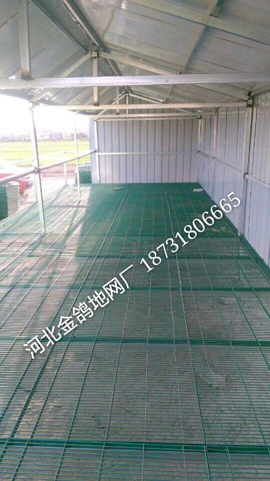 台湾鸽舍建造 大陆鸽舍地网产品